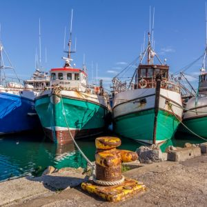 4 Trawlers, Gansbaai Harbour, South Africa